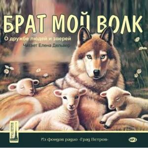 brat-moj-volk1-300x300