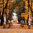 Летний сад осень