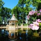 Летний сад весна 5
