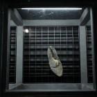 Вещи убитых: обувь