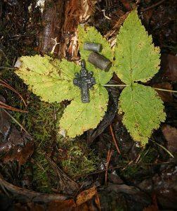 Гильзы и нательный крестик из расстрельной ямы в Ковалевском лесу