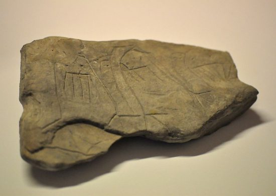 Камень с изображениями моржей