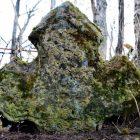 Хилок, Лужский р-н. На деревенском кладбище сохранился замечательный крест из известняка. Увы, местное население совсем одичало и крест не уважает - его забросали мусором.