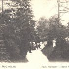 В парке Ридингера, 1910-е гг.